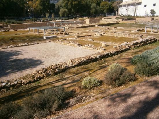 Aristotle's Lyceum
