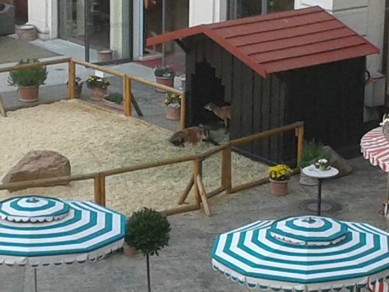 """Hotel """"Colosseo"""" Europa-Park: Ziegen im Innenhof"""