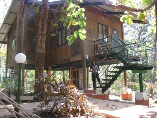 Sajan Nature Club: Tree house