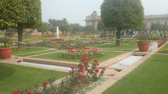 Rose garden picture of mughal garden new delhi Mughal garden booking