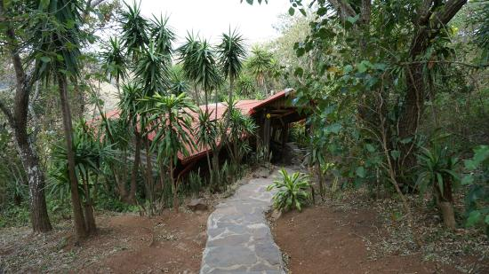 Cabins El Sol: Außenanlage
