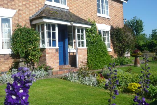 Phepson Farm B&B: Delphiniums in the Summer