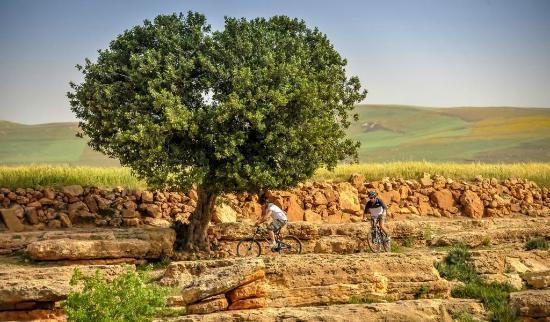 Dunes & Desert Exploration : Try our bike ride !