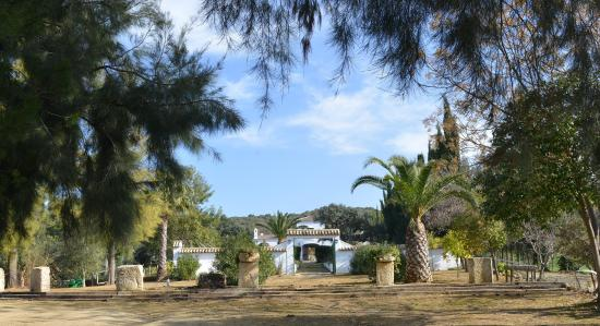 Maravilla Verde: The finca, in the middle of nature and with a beautiful garden