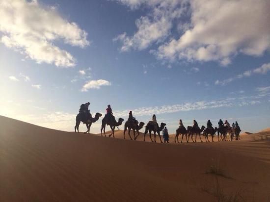 Merzouga Online - Camel Trekking - Day Tours