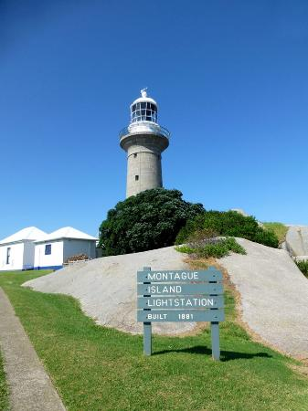 Lighthouse Charters Narooma