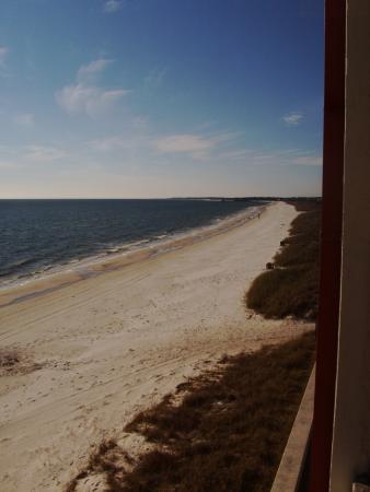 El Governor Motel: Great view!