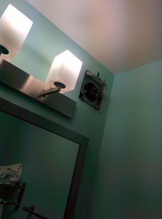 BEST WESTERN PLUS Glen Allen Inn: Bathroom fan - unsightly.