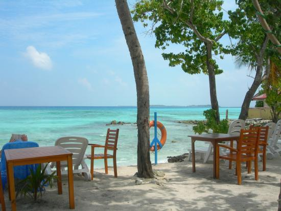 Arena Beach Hotel Terre Et Plage