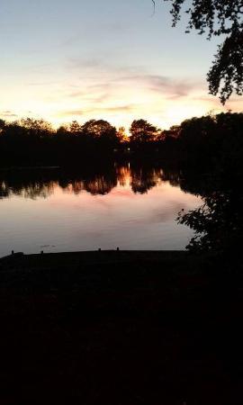 York Lakeside Lodges: View of lake