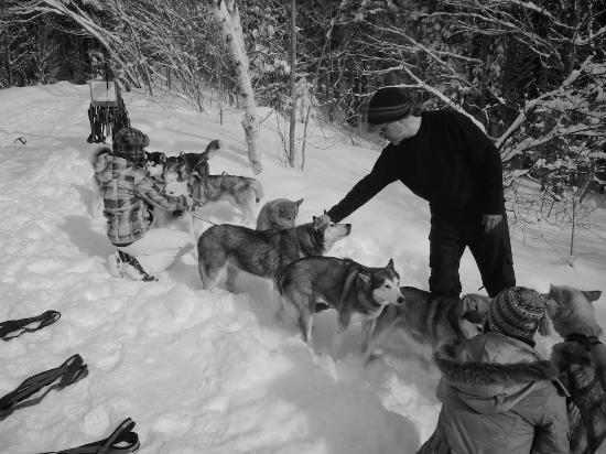 Elmore, VT: Ken petting Pax.