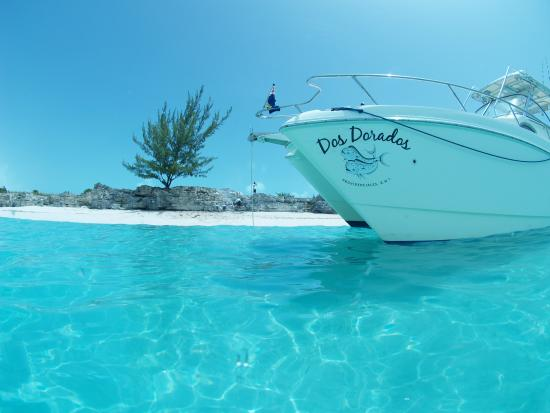 Colours of turks and caicos picture of grand slam for Turks and caicos fishing
