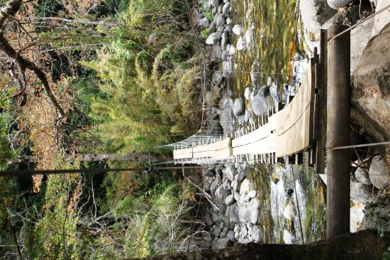 Hotel & Termas Huife: Footbridge across the stream