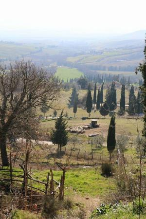 Podere Il Casale: View from the hill