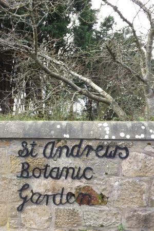 St Andrews Botanic Garden: Lindo!