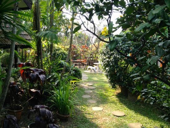 Baan Bua Guesthouse : garden