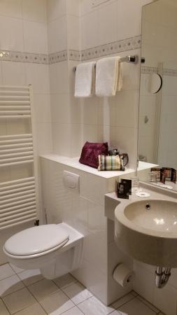 Favored Hotel Hansa: shower
