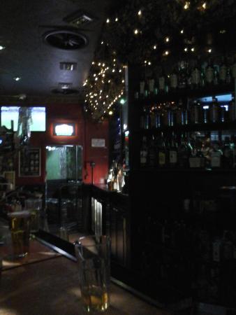 Zoo Bar: Balcão do bar