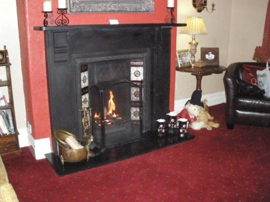 Afon View Guest House : Gorgeous fire to welcome you home from the cold outside