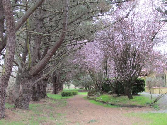 Sonoma Coast Villa & Spa : Eastern Walkway