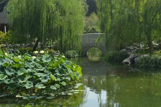 Almost A Monet Picture Of The Huntington Library Art