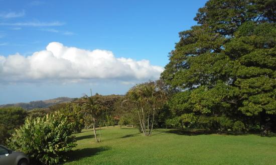 Sunset Hotel Monteverde: Lovely View