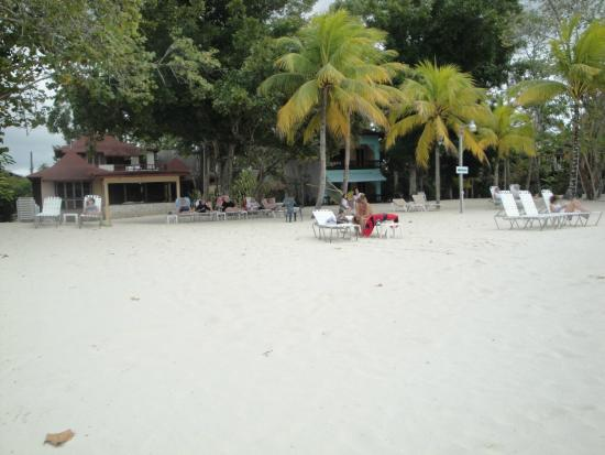 Whistling Bird Resort: Lush gardens beachside