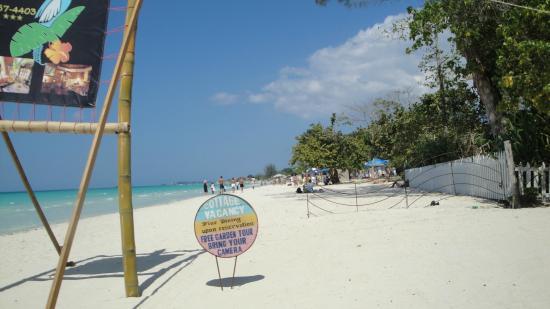 Whistling Bird Resort : Beach front