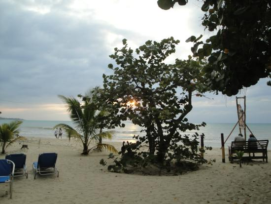 Whistling Bird Resort : View from Dining area and bar