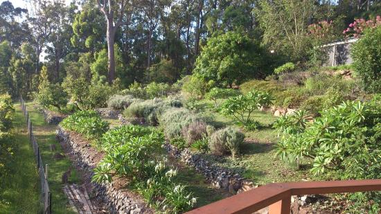 Wallaby Ridge Retreat: beautiful gardens with Wallaby's