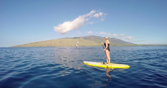 ‪Maui Stand Up Paddle Boarding‬