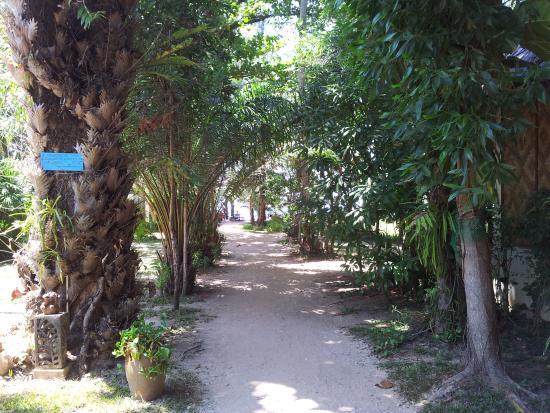 Khao Lak Green Beach Resort: To the beach..