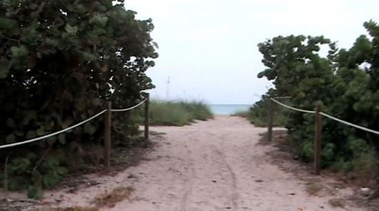 Bal Harbour Beach: Camino a la playa.