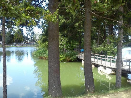 Lago di acquapartita foto di lago di acquapartita bagno di romagna tripadvisor - Parco laghi bagno di romagna ...