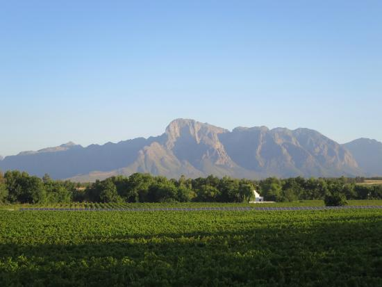 Vrede en Lust Estate: View from vineyard balcony with beautiful vista.