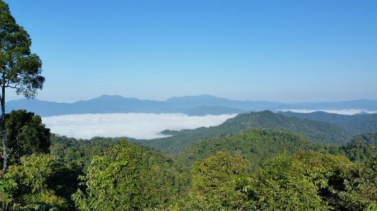 Kaeng Krachan National Park: View above the clouds
