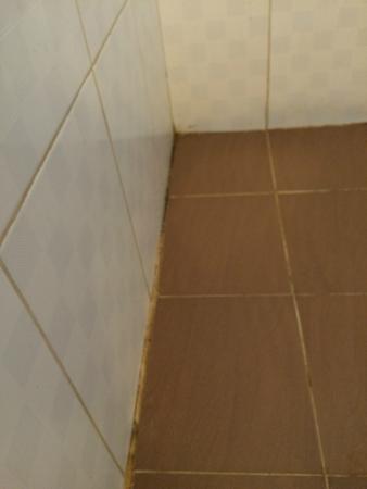 Ancarine Beach Resort: Terrible bathroom 2