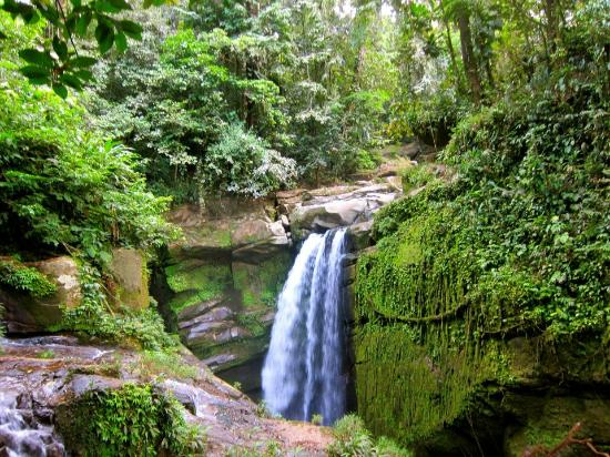 Provincia di Chiriqui, Panama/Panamá: First view of the main waterfall