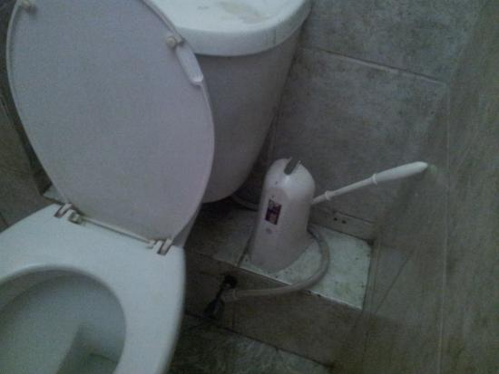 Hotel Kipepeo : bathroom