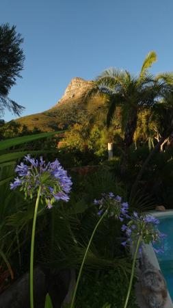 Camps Bay Ridge Guest House: Gartenbereich