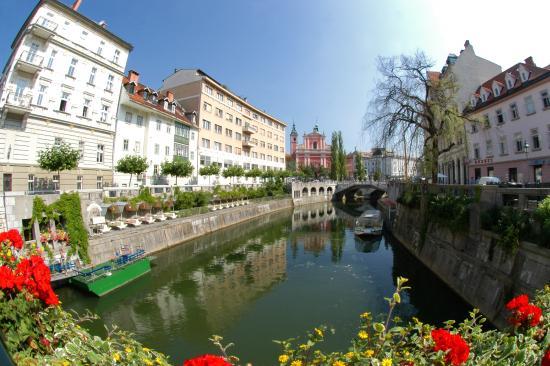 Galeria Rooms: Ljubljanica river