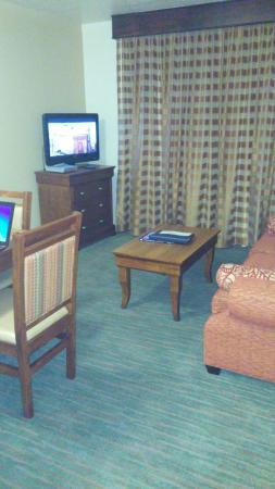 Havasu Dunes : Living room