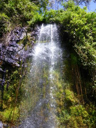Kiambu, Kenya: The waterfall - a cool spot in the forest