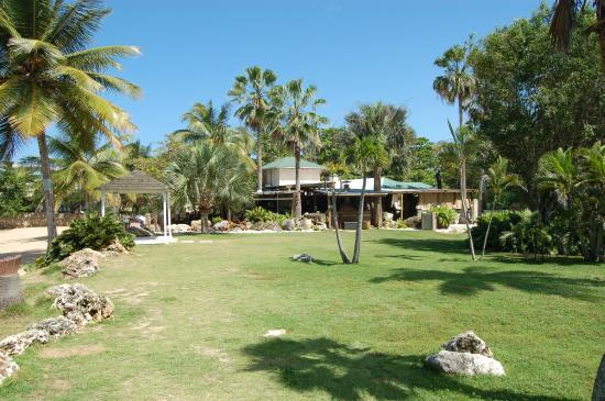 Villa Montana Beach Resort : view of where the restaurant is
