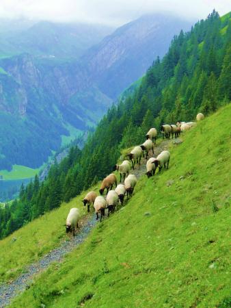 Weissbad, Suíça: Scenic beauty