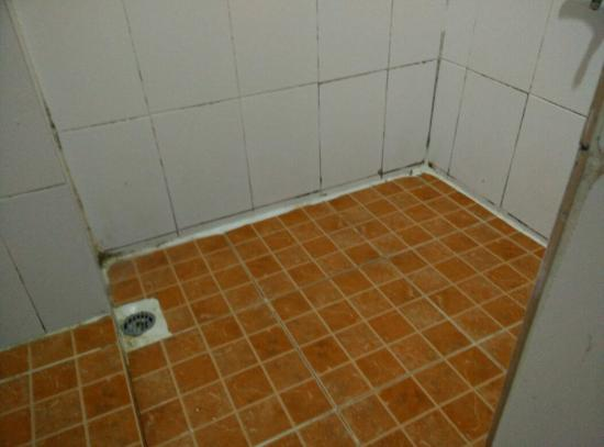 Thana Hotel & Guesthouse: Mouldy bathroom