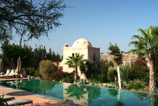 Erwachsenenpool Bild Von Le Jardin Des Douars Essaouira Tripadvisor