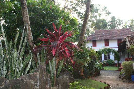 Eden Garden Heritage Homestay: Eden Garden Feb 2015