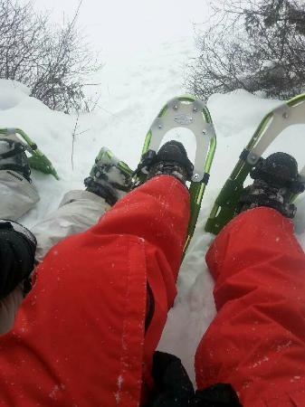 Manoir des pins : Belle activité d'hiver!!