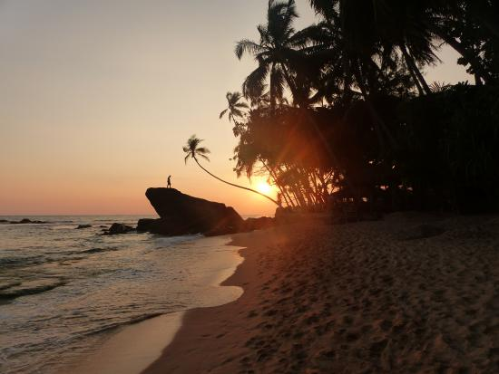 Shanthi Beach Resort: Beach at sunset